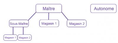 Système de point de vente réseau de magasin